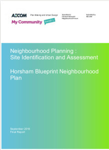 site assessment